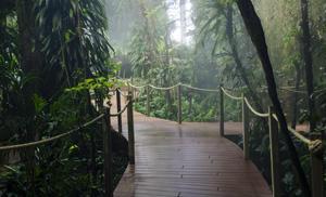 La-Serre-Tropicale-oceanopolis